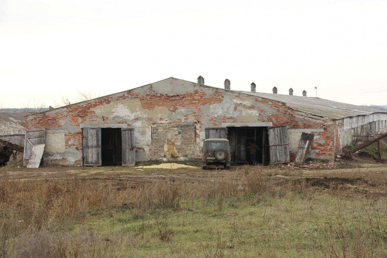 помещения для скота (1)
